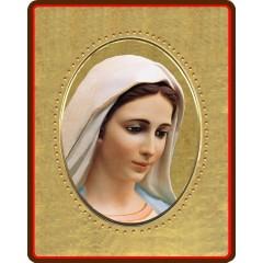 La Madonna di Medjugorje 8x10 cm.