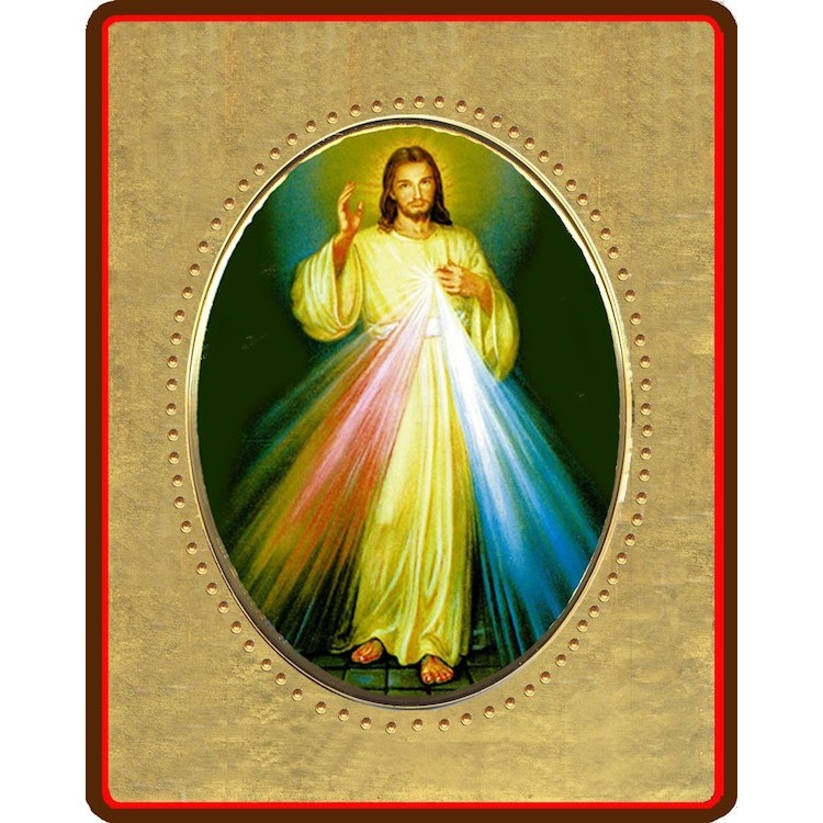 Gesù Misericordioso 8x10 cm.