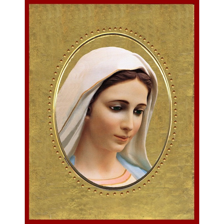 La Madonna di Medjugorje 15x20 cm.